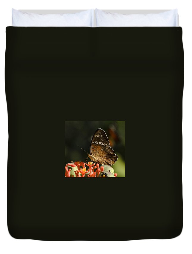 Butherfly Wings Flower Red Brown Green Venezuela Botanic Garden Duvet Cover featuring the photograph Butherfly by Galeria Trompiz