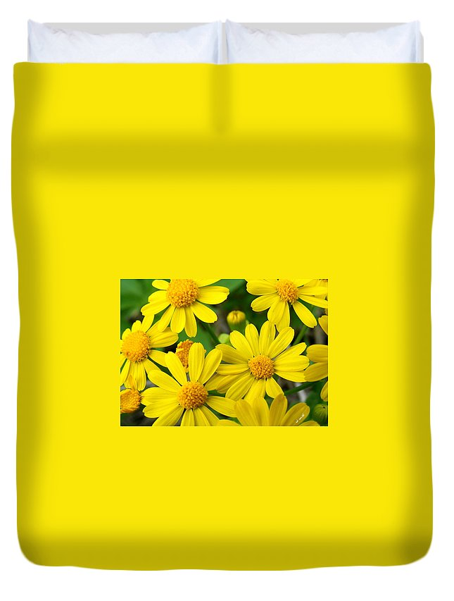 Butter Fields Duvet Cover featuring the photograph Butter Fields by Ed Smith