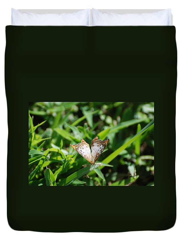 Butterfly Duvet Cover featuring the photograph Butter Fly by Rob Hans