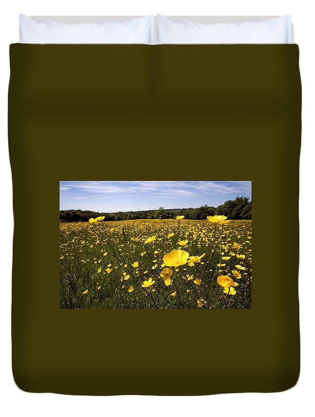 Buttercups Duvet Cover featuring the photograph Buttercup Field by Bob Kemp