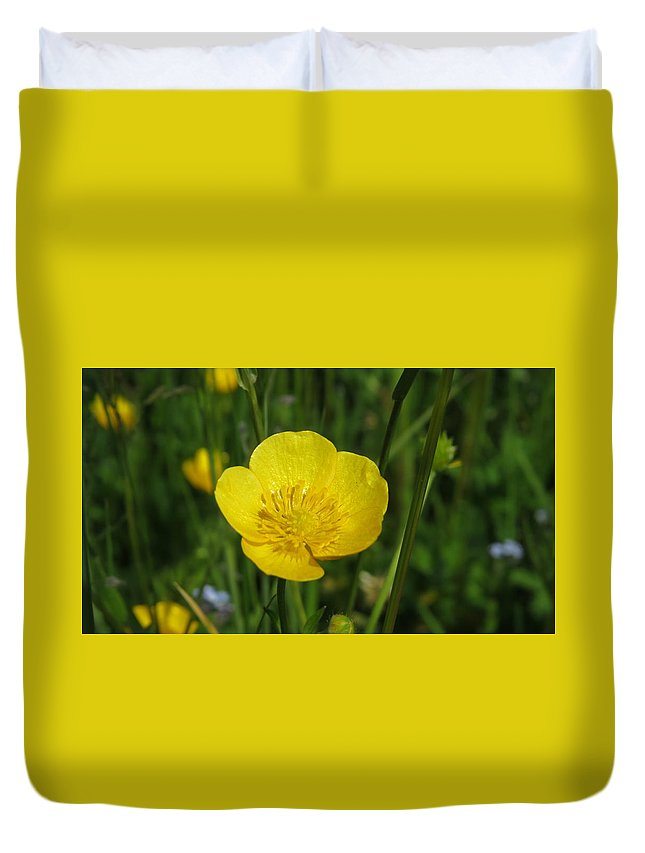 Buttercup Duvet Cover featuring the photograph Buttercup Flower by Santiago Fagan