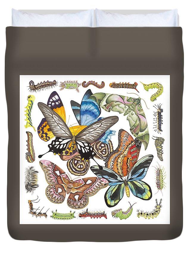 Butterflies Duvet Cover featuring the painting Butterflies Moths Caterpillars by Lucy Arnold