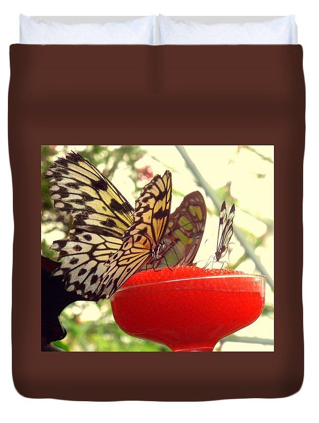 Butterflies Duvet Cover featuring the photograph Butterflies by Rebecca Malo