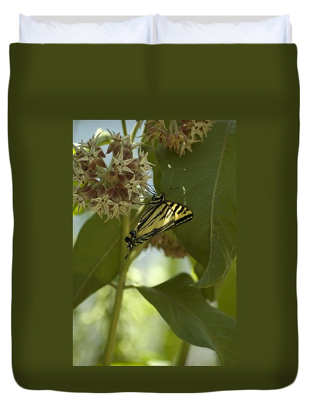 Flower Duvet Cover featuring the photograph Butterfly 1 by Sara Stevenson