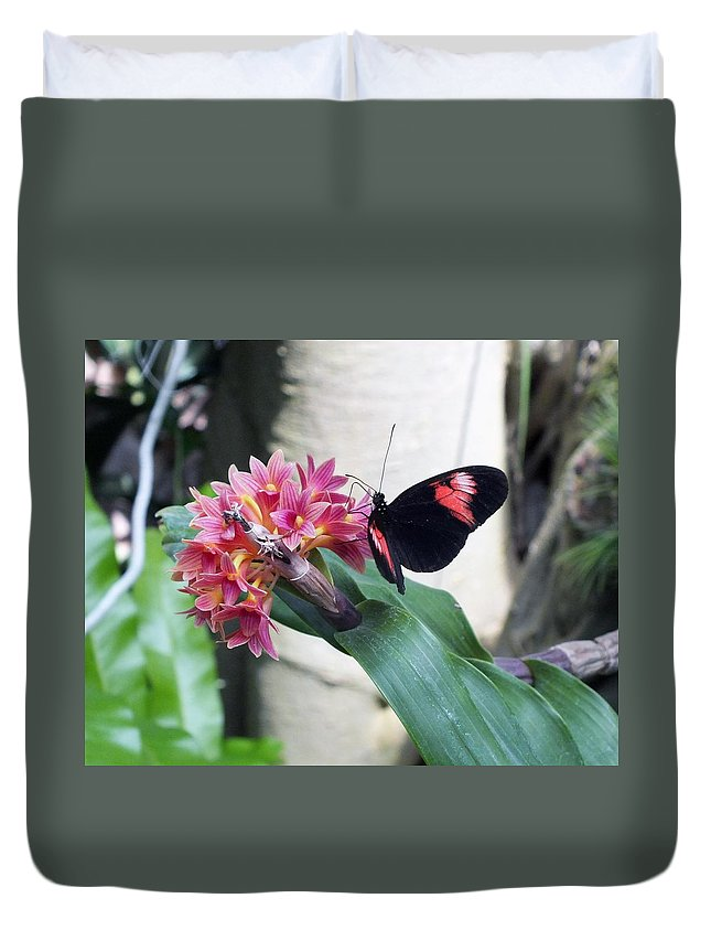 Butterfly Duvet Cover featuring the photograph Butterfly 2 by Sheli Kesteloot