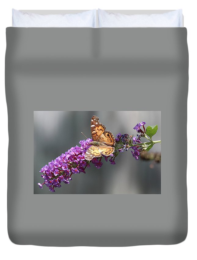 Butterfly 3 Duvet Cover featuring the photograph Butterfly 3 by Shannon Louder