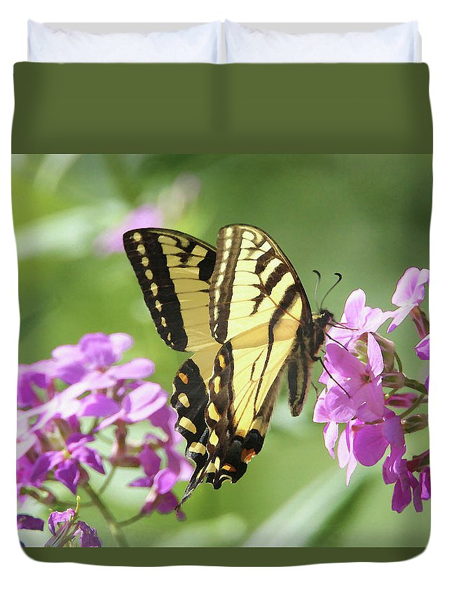 Butterfly Duvet Cover featuring the digital art Butterfly #9 by David Stasiak