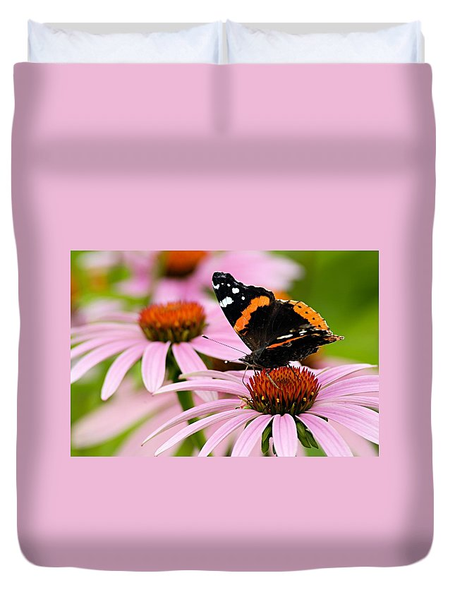 Photography Duvet Cover featuring the photograph Butterfly And Cone Flowers by Larry Ricker