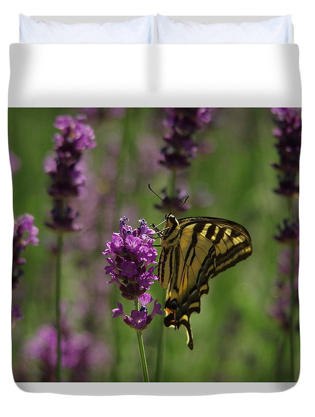 Butterfly Duvet Cover featuring the photograph Butterfly Balancing Act by Jeff Swan