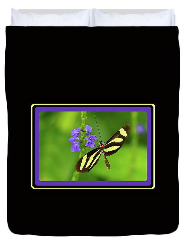 Mariposa Duvet Cover featuring the photograph Butterfly by BYETPhotography