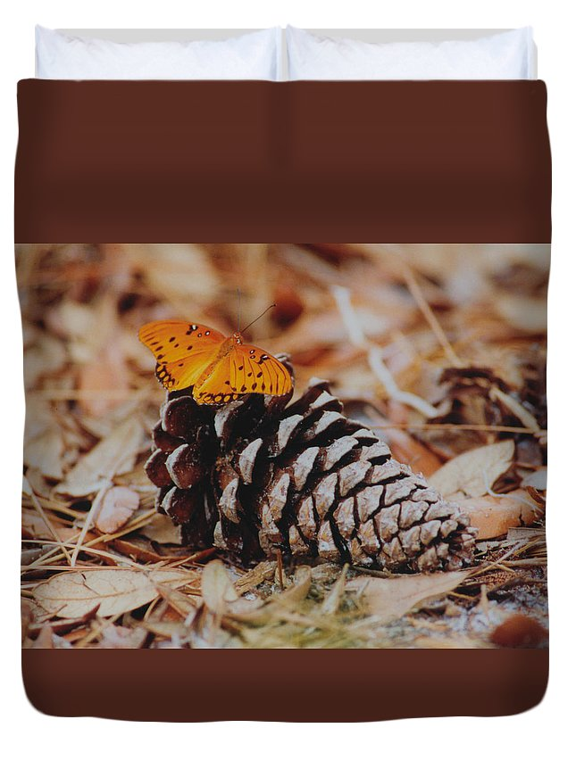 Butterfly Duvet Cover featuring the photograph Butterfly Cone by Ron Swonger