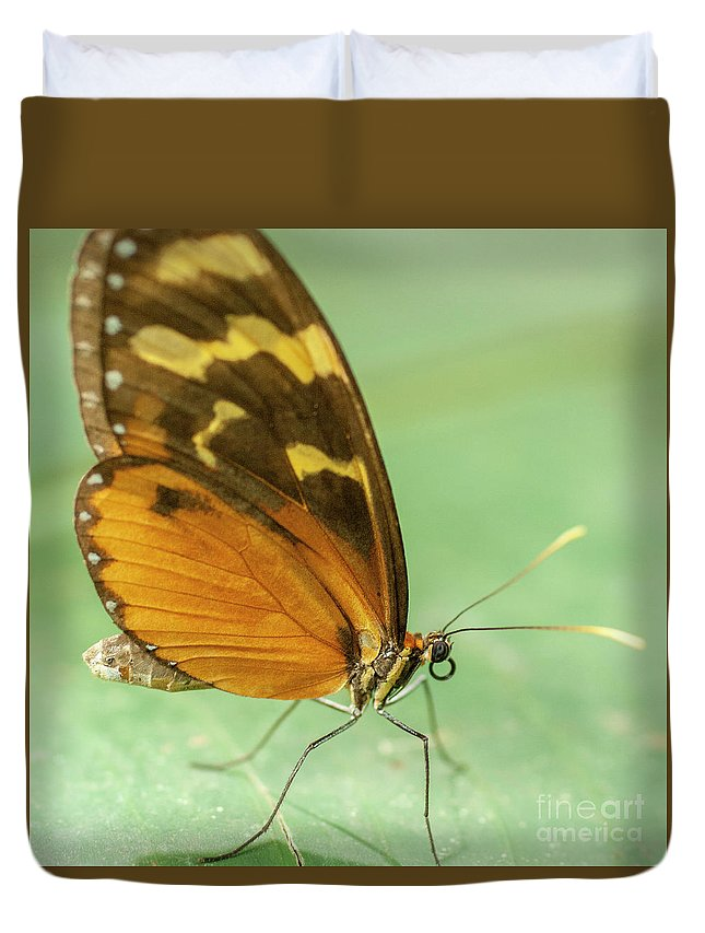 Heiko Duvet Cover featuring the photograph Butterfly Eueides Isabella by Heiko Koehrer-Wagner