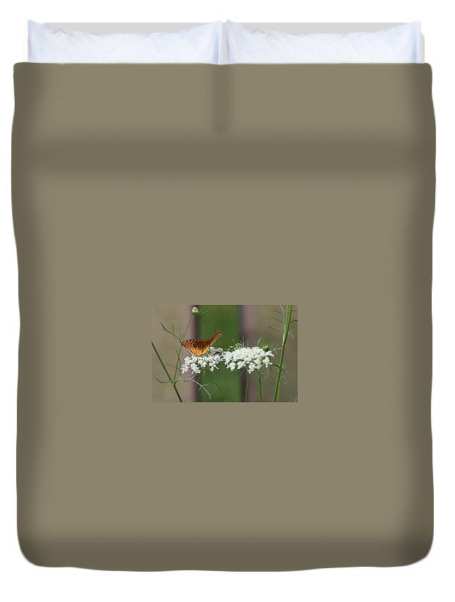 Butterfly Duvet Cover featuring the photograph Butterfly Feeding by Debbie Storie