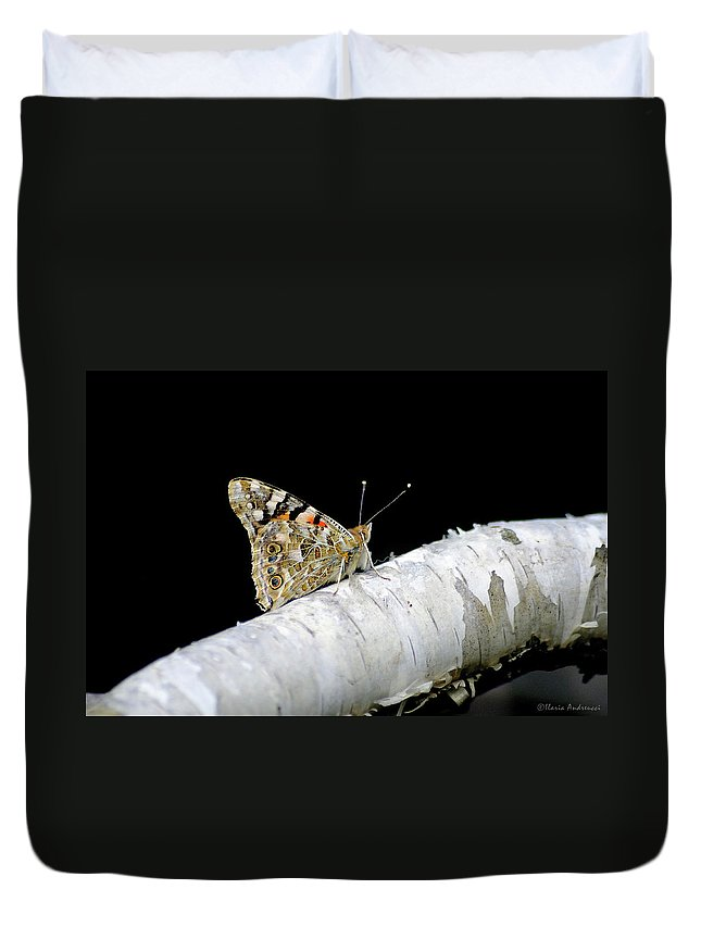 Farfalla Duvet Cover featuring the photograph Butterfly by Ilaria Andreucci