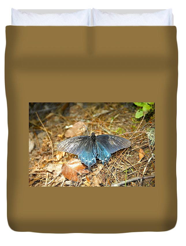 Butterfly Duvet Cover featuring the photograph Butterfly In The Forest by David Lee Thompson