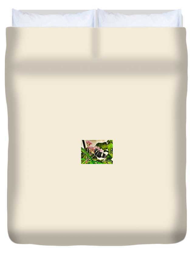 Wildlife Duvet Cover featuring the photograph Butterfly Joy by MaryLou England