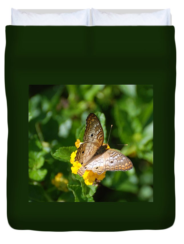 Butterfly Duvet Cover featuring the photograph Butterfly Land by Rob Hans