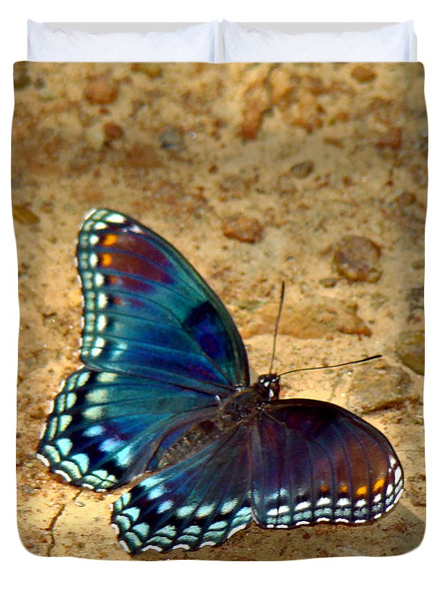 Red Spotted Purple Duvet Cover featuring the photograph Butterfly Landing by Terry Anderson