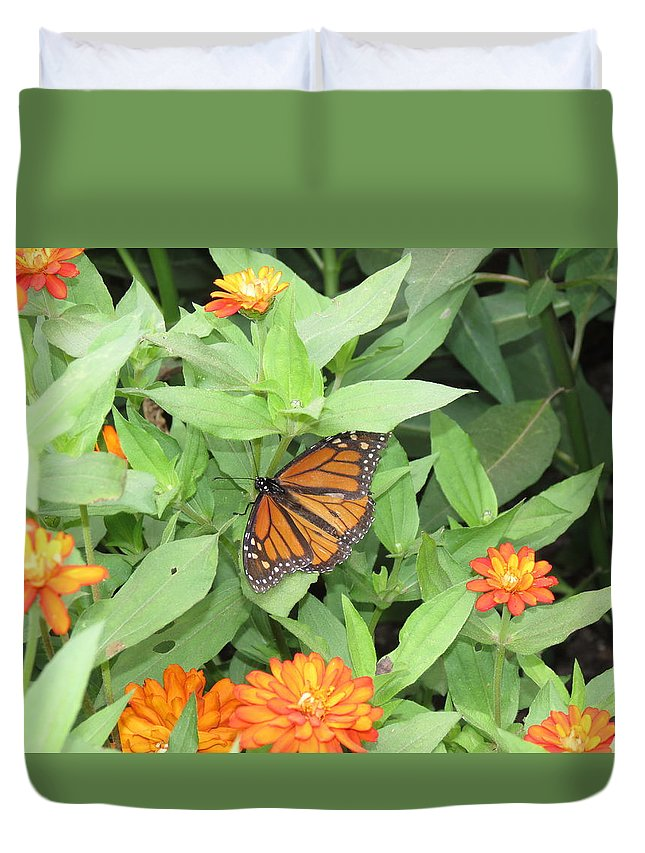 Butterfly Duvet Cover featuring the photograph Butterfly by Creations by Shaunna Lynn