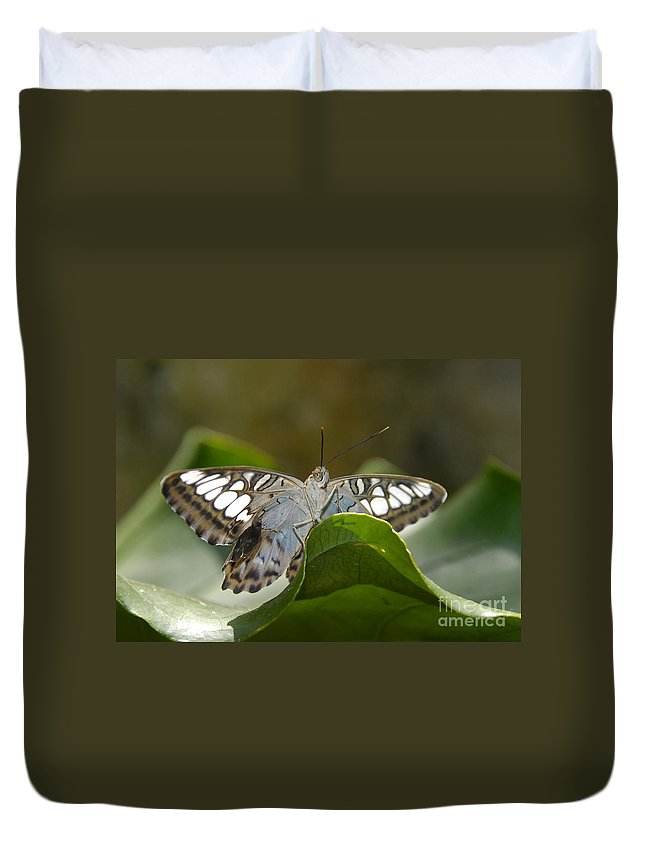 Pretty Duvet Cover featuring the photograph Butterfly Watching by David Lee Thompson