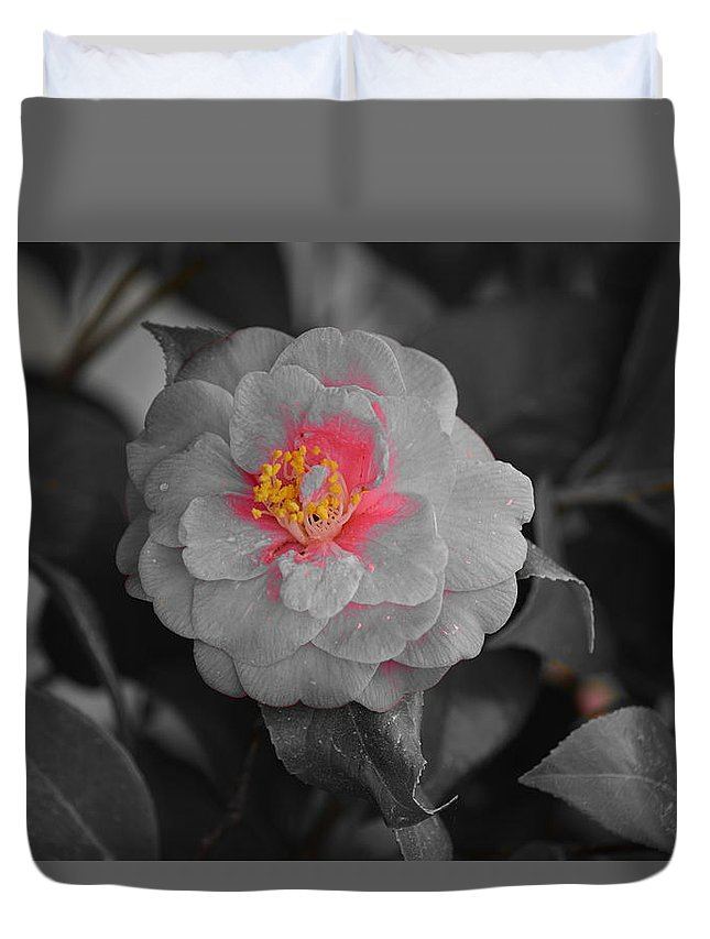 Pink Rose Duvet Cover featuring the photograph Bw Pink Rose by Southernsweety