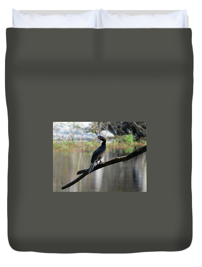 Nature Duvet Cover featuring the photograph By The River by Rodrigo Padilla M