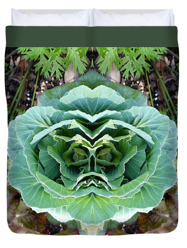 Cabbage Duvet Cover featuring the photograph Cabbage Head by Melody Harris