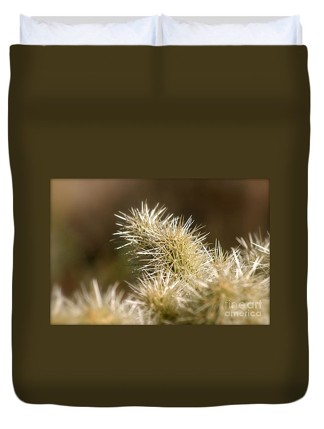 Cactus Duvet Cover featuring the photograph Cacti by Nadine Rippelmeyer