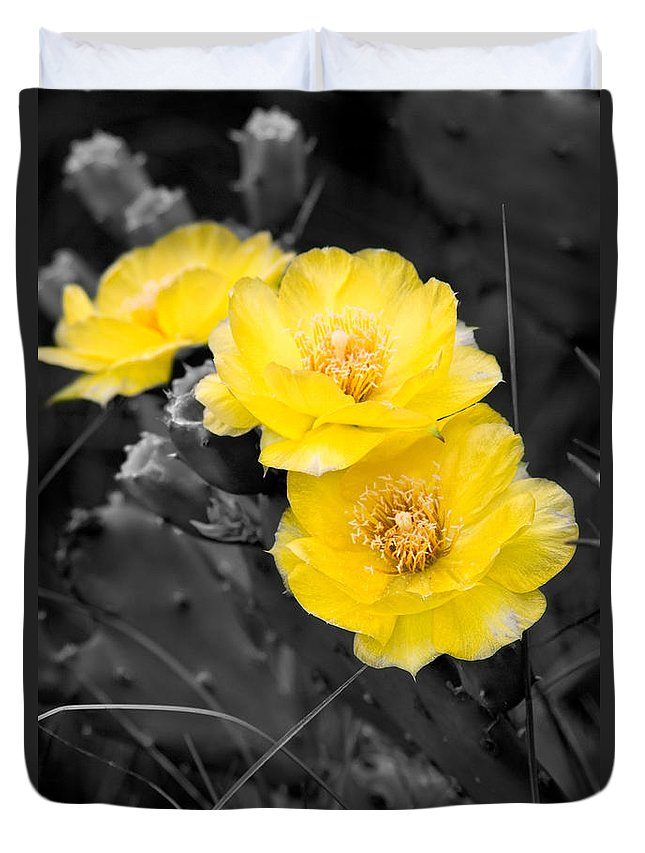 Cactus Duvet Cover featuring the photograph Cactus Blossom by Christopher Holmes