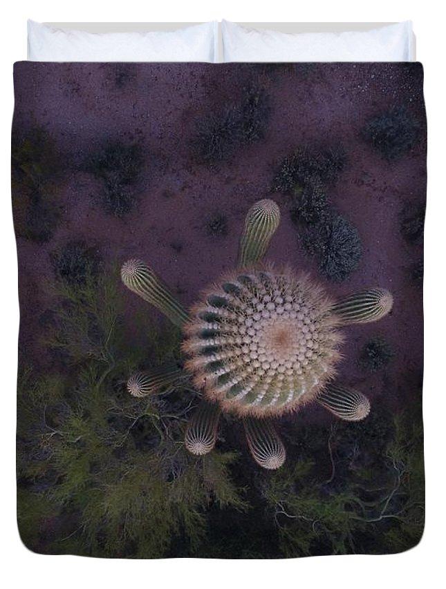Cactus Duvet Cover featuring the digital art Cactus Eve by Steve Winden