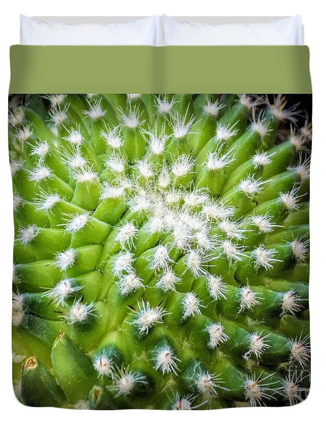 Cactus Duvet Cover featuring the photograph Cactus Feathers by William Tasker