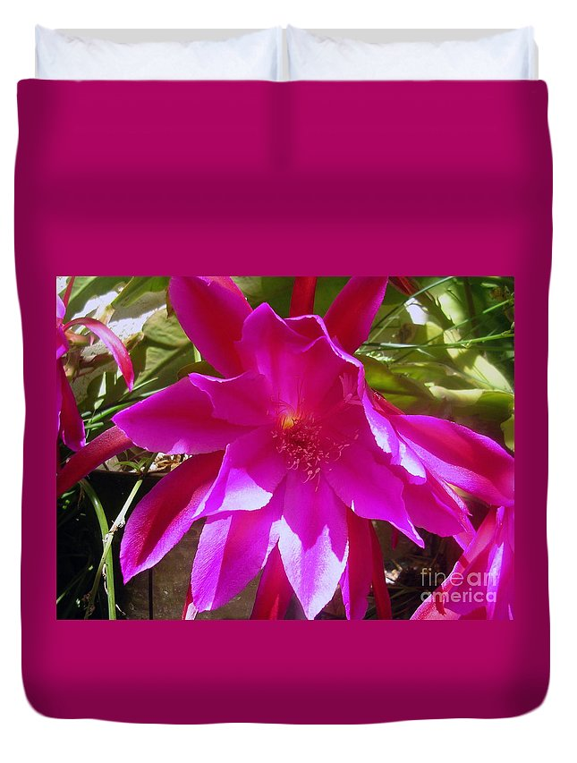 Cactus Duvet Cover featuring the painting Cactus Flower 1 by Dawn Hough Sebaugh