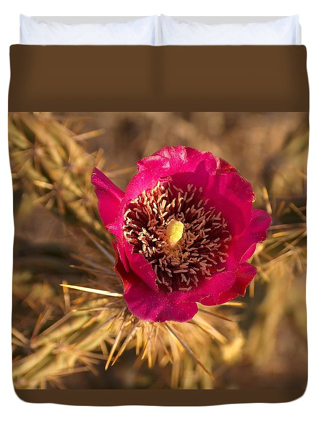 Cactus Flowers Wildflowers Duvet Cover featuring the photograph Cactus Flower 1 by Tim McCarthy