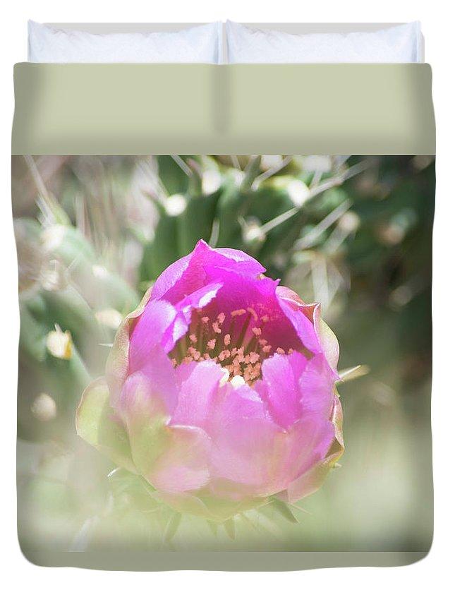 Cactus Duvet Cover featuring the photograph Cactus Flower by Deborah Reinhardt - Adams