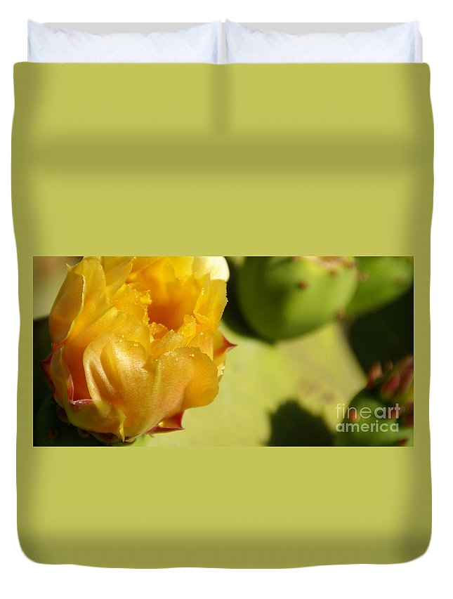 Cactus Duvet Cover featuring the photograph Cactus Flower by Linda Shafer