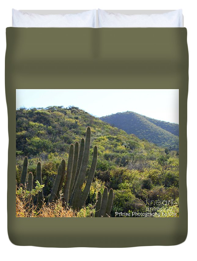 Cactus Duvet Cover featuring the photograph Cactus In The Desert by Charlene Cox