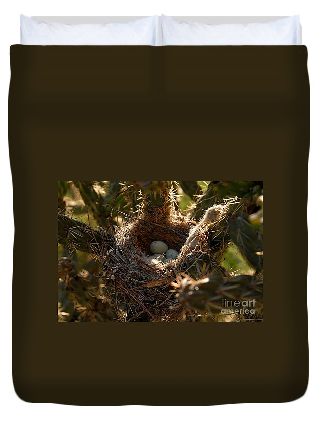 Cactus Duvet Cover featuring the photograph Cactus Nest by David Lee Thompson