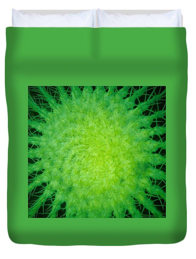 Lehtokukka Duvet Cover featuring the photograph Cactus Nr4 by Jouko Lehto