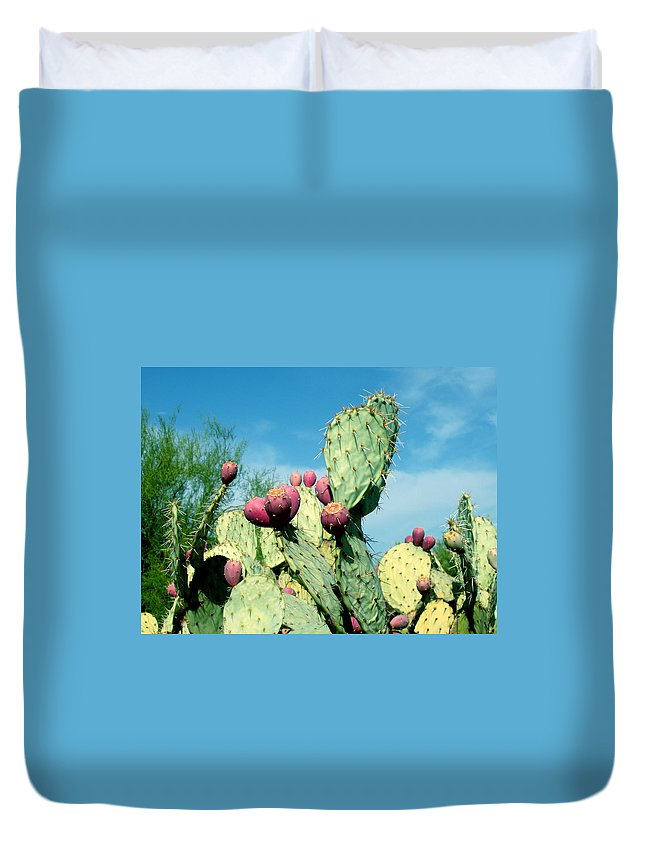 Cactus Duvet Cover featuring the photograph Cactus by Wayne Potrafka