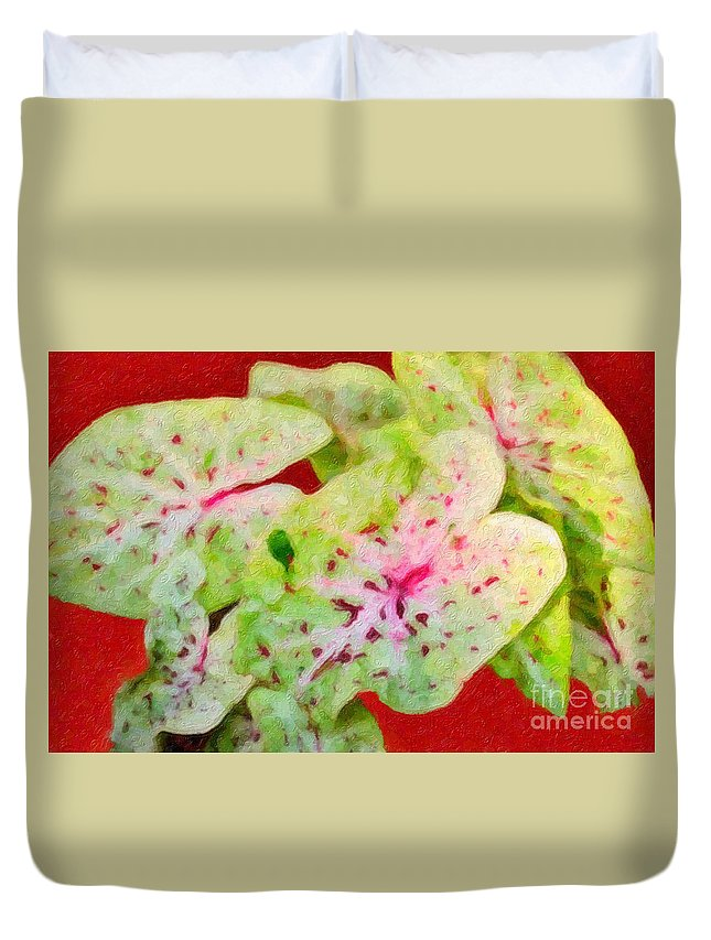Caladiums Duvet Cover featuring the photograph Caladiums by Betty LaRue