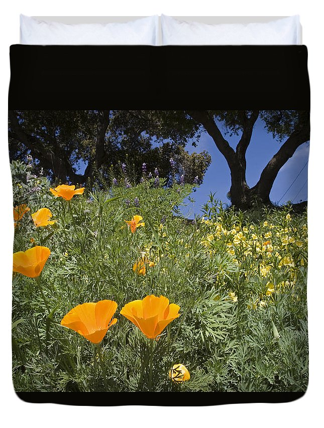Nobody Duvet Cover featuring the photograph California Poppy Eschscholtzia by Rich Reid