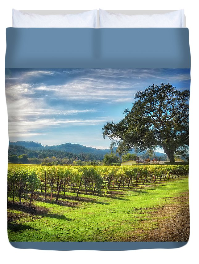 Sonoma Duvet Cover featuring the photograph California Wine County - Sonoma Vineyard And Lone Oak Tree by Jennifer Rondinelli Reilly - Fine Art Photography