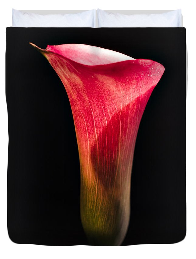 Lily Duvet Cover featuring the photograph Calla Lily 2 by William Atkins