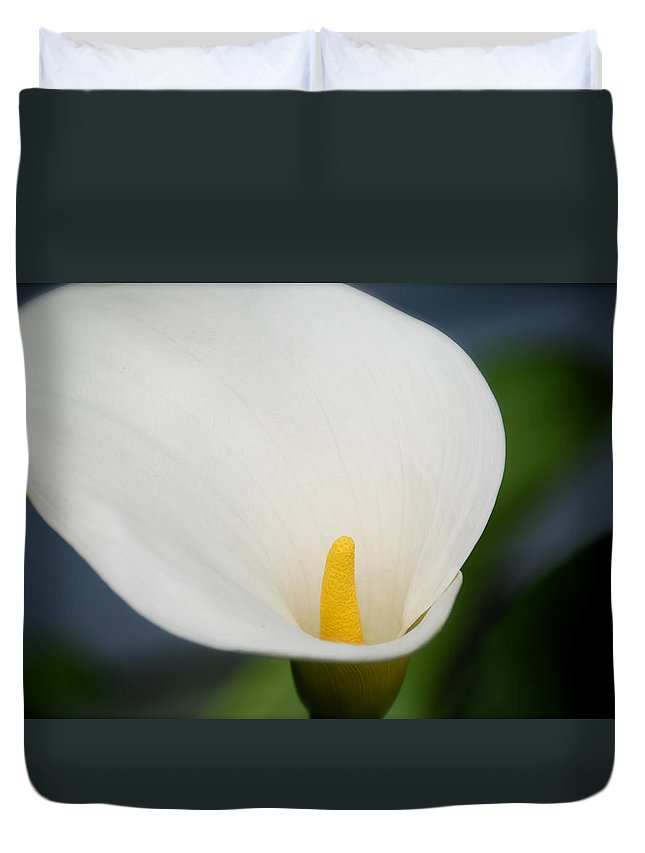 Calla Lily Flower Plant Yellow White Duvet Cover featuring the photograph Calla Lily by Rick Takagi