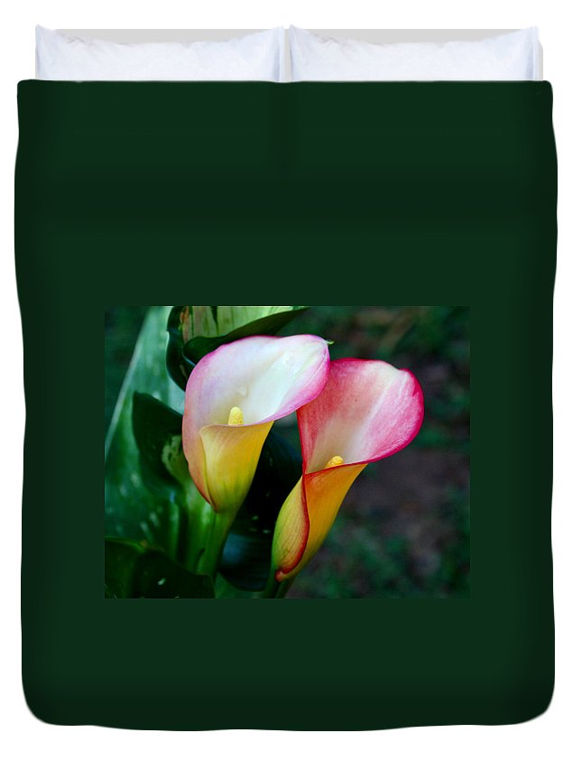 Calla Lily Duvet Cover featuring the photograph Calla Lily Twins by Paul Anderson