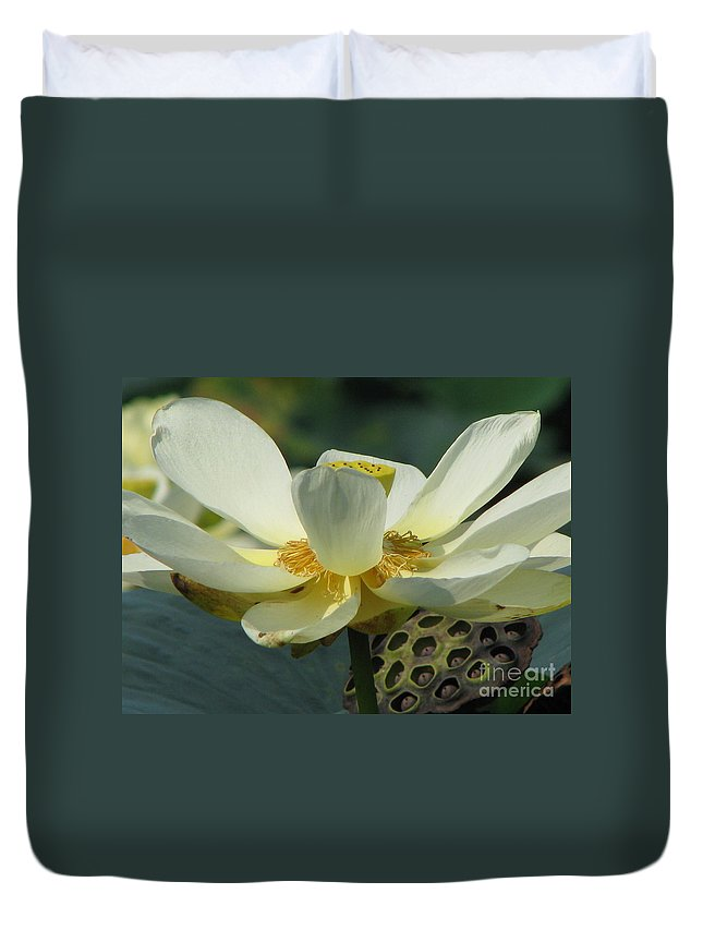 Lotus Duvet Cover featuring the photograph Calm by Amanda Barcon