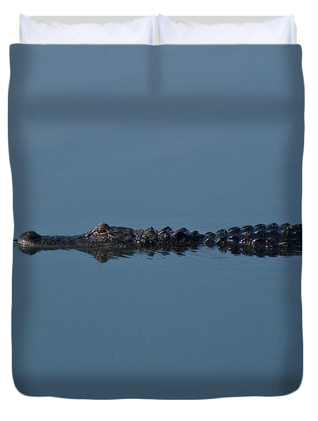 Alligator Duvet Cover featuring the photograph Calm Water Cruise by Steven Sparks
