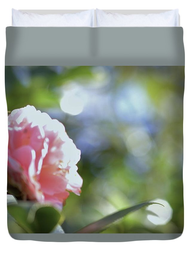 Camellia And Early Light Duvet Cover featuring the photograph Camellia And Early Light by Warren Thompson