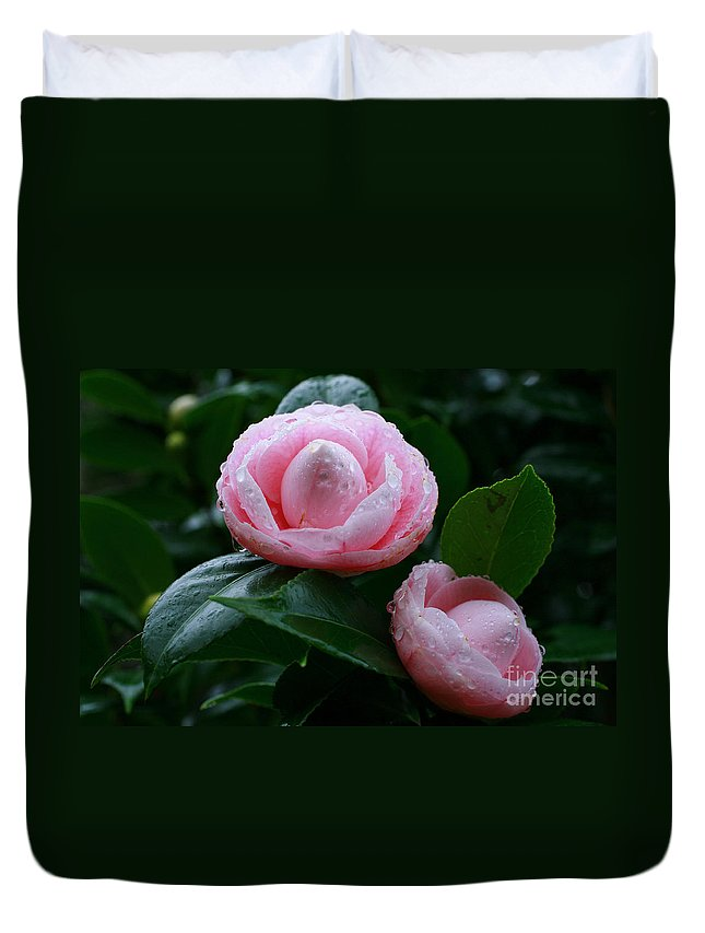 Bloom Duvet Cover featuring the photograph Camellias by Gaspar Avila