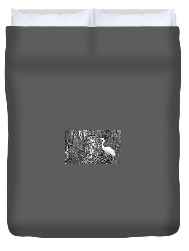 Bird Duvet Cover featuring the photograph Camouflage by Ed Smith